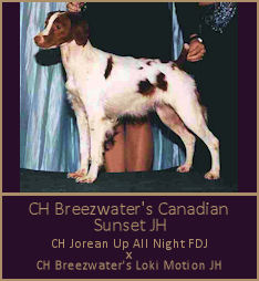 CH Breezwater's Canadian Sunset JH